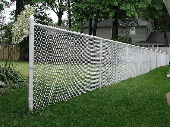 chain link fence white painted