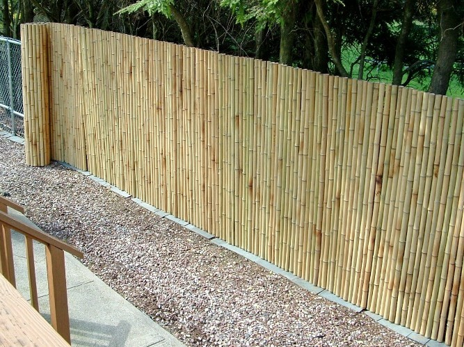chain link fence bamboo